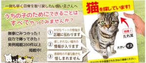 家出猫や迷子ペット捜索用チラシ制作「ねこてっくす」-画像